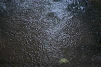 水たまりの歌   - 風の彩り-2