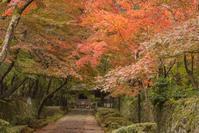 紅の金剛輪寺 - 気ままにお散歩