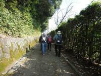 きょうの禅寺ともみじの嵐山 - 二匹とふたり