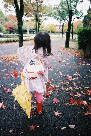 傘さして紅葉散歩。 - SunsetLine