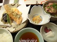 鮭の天ぷら。 - 染め色・いろいろ