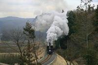 白煙膨らむ~ - 真岡鉄道 - - ねこの撮った汽車