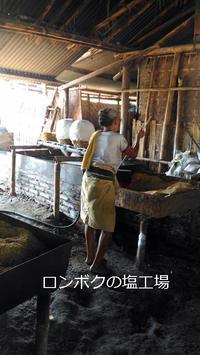 一年中見学できる東ロンボクの塩工場 - ママハナのロンボク日記 Dua