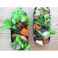 鶏胸肉と香味野菜の炒め物BENTO - Feeling Cuisine.com