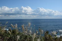 広い風景 - 三宅島風景