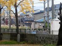 藤田八束の鉄道写真@千刈小学校前の踏切から写真を撮りました・・・秋と鉄道、紅葉が綺麗です - 藤田八束の日記