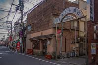 記憶の残像 2017年 花の東京 -57 東京都文京区 千駄木 - ある日ある時 拡大版