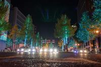 御堂筋イルミネーション2017初日の様子~後編 - 柳に雪折れなし!Ⅱ