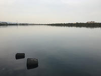 仕事上がりで淀川へ - WaterLettuceのブログ
