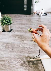 デンタルケアな猫おもちゃ - necoとシンプルインテリア
