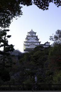 名城モミジ - ホンテ島 日記