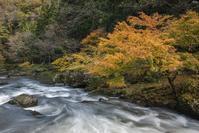 秋の荒俣峡 - 四季燦燦 癒し系~^^かも風景写真