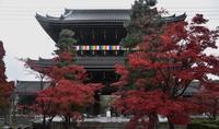 京都プチ旅行 - 徒然日記