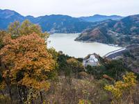 冬桜を訪ねて - 岩月澄子-時の欠片を拾い集めて・・・
