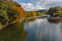 秋色に染まる散歩道 - デジカメ写真集
