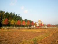 副田(そえだ)・副田十文字~副田小学校前 - さつませんだいバスみち散歩