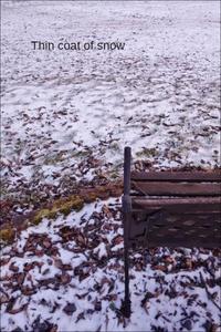 積雪状況 - ハーブガーデン便り