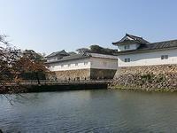 彦根城と醒ヶ井巡り - 「作家と不思議なカレー」の話