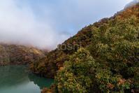 徳山ダムの秋 3 - toshi の ならはまほろば