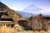 日本の秋 いやしの里 - 湘南発〜ドラマチックに