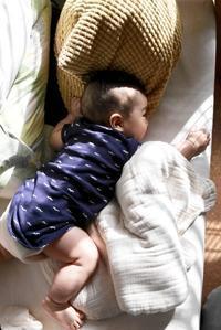 操法 お水と睡眠 - ちいさな毎日