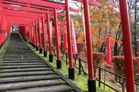 王子山稲荷神社の秋 - 丹馬のきょうの1枚
