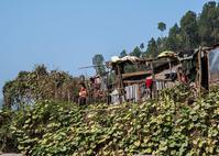 ネパール探訪(ジャナチャタナ高校・パンチャカンニャ中学校) - 写真の散歩道