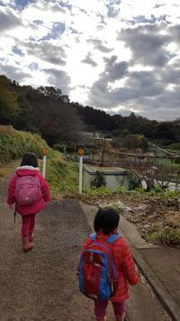 鎌倉六国見山の畑を見学 - 鎌倉fonteの日常
