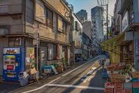 記憶の残像 2017年花の東京 -58東京都中央区月島 - ある日ある時 拡大版
