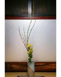 秋冬の花 - 歌う寺嫁 さちこの つれづれ精進茶和日記