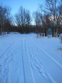 北軽井沢も積雪です。1日5ハンドクリームの季節到来です。 - 北軽井沢スウィートグラス