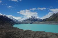 NZ:タスマン氷河とブッシュウォーク - bluecheese in Hakuba & NZ:白馬とNZでの暮らし