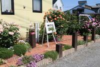 道路境界スペースを整理 - my small garden~sugar plum~