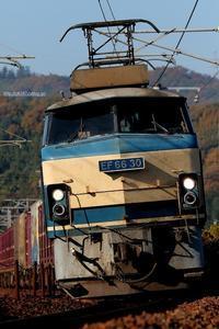 運良く。 - 山陽路を往く列車たち