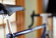 冬眠 - 四十の手習い 自転車と写真が好き