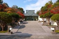 MIHO MUSEUM (ミホミュージアム)・ガラス屋根 - アトリエMアーキテクツの建築日記