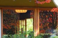 日本庭園 - 暮らしの中で