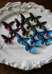 黙々と蝶々を作っています・・とワンコです - 布の花~花びらの行方 Ⅱ