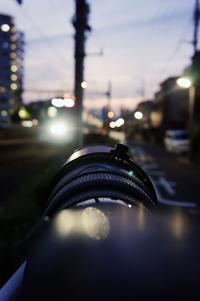 daily - The collection of photograph