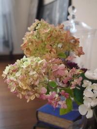 庭のあじさいでリース作りの前準備 - 小さな花アトリエ
