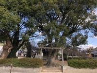 今井神社(宗像市赤間) - 今日は何処まで
