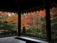 広島・三滝寺の紅葉~後編 - 柳に雪折れなし!Ⅱ