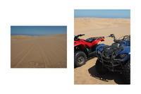 ナミビア旅行(4)-バギーでナミブ砂漠を走る&砂漠滑り&アクシデント- - Fine Days@Addis Ababa