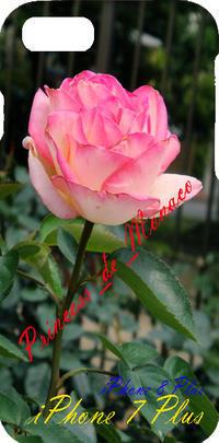 薔薇:プリンセス ドゥ モナコ(Princess_de_Monaco) - 写真と画像 Illustrator&Photoshopで楽しんでます! ネイル画像!