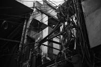 夜明けのドゥビドゥバ - STREET CRAWLER