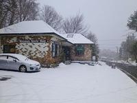 雪が降り積もっています~!!@乗鞍高原。 - 乗鞍高原カフェ&バー スプリングバンクの日記②