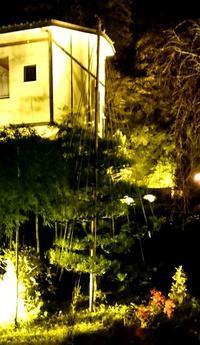 ライトアップ雪吊 - 金沢犀川温泉 川端の湯宿「滝亭」BLOG