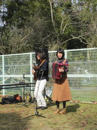 森の演奏会 - 花の自由旋律