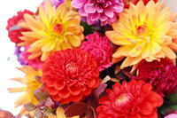 秋の装花シェ松尾松濤レストラン様へダリア、生命の色 - 一会 ウエディングの花
