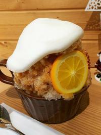 奈良・ほうせき箱のかき氷 - Emily  diary